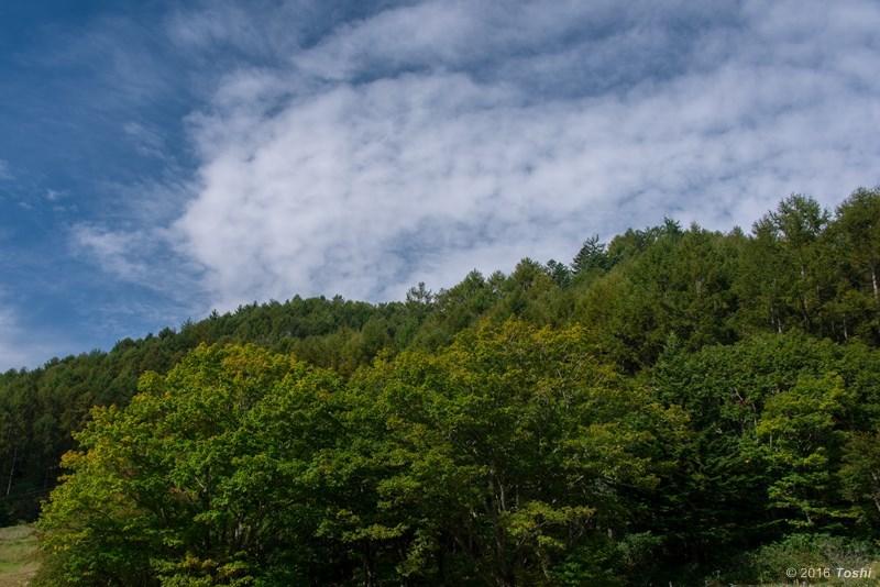 南信州 クラブ旅行 妻籠~富士見台_c0350572_21052008.jpg
