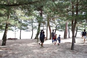 近江舞子内湖でたらい舟_e0008880_11142512.jpg