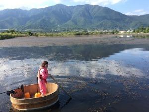 近江舞子内湖でたらい舟_e0008880_11155629.jpg