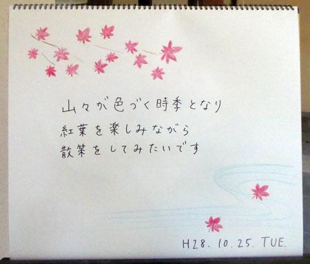 紅葉狩_b0364195_14340980.jpg