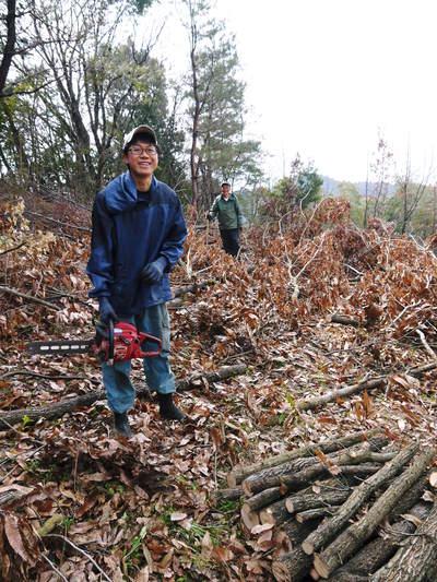 原木しいたけ 平成28年度も11月上旬からの出荷にむけて現在の栽培地の様子と2年間の栽培記録(後編)_a0254656_17294720.jpg