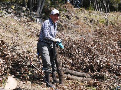 原木しいたけ 平成28年度も11月上旬からの出荷にむけて現在の栽培地の様子と2年間の栽培記録(後編)_a0254656_17591517.jpg