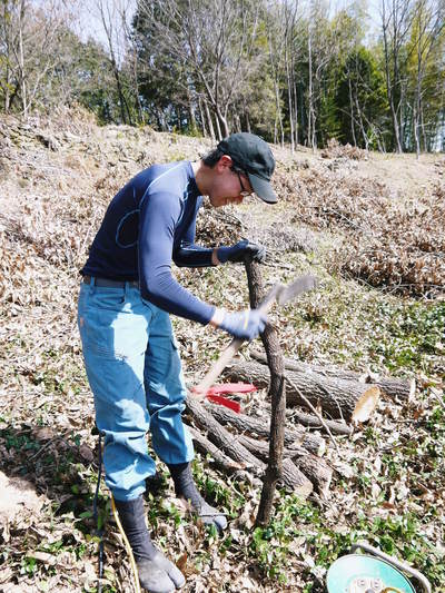 原木しいたけ 平成28年度も11月上旬からの出荷にむけて現在の栽培地の様子と2年間の栽培記録(後編)_a0254656_1843067.jpg