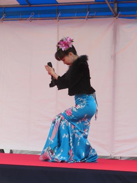 22日の川辺堀之内祭りと旧古河庭園・平塚亭と北とぴあと、日本のサーモン_e0133780_00241697.jpg