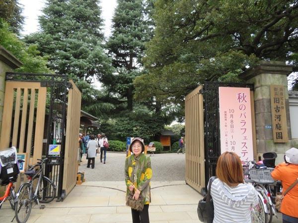 22日の川辺堀之内祭りと旧古河庭園・平塚亭と北とぴあと、日本のサーモン_e0133780_00573822.jpg