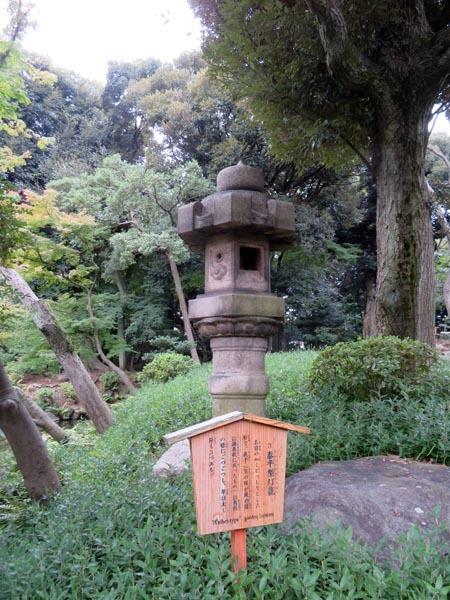 22日の川辺堀之内祭りと旧古河庭園・平塚亭と北とぴあと、日本のサーモン_e0133780_01135230.jpg