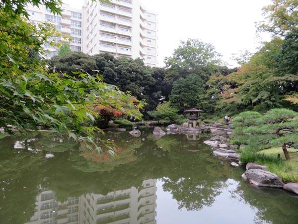22日の川辺堀之内祭りと旧古河庭園・平塚亭と北とぴあと、日本のサーモン_e0133780_01155127.jpg