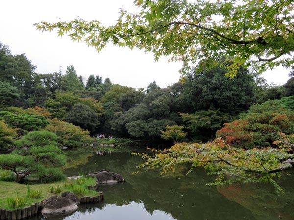 22日の川辺堀之内祭りと旧古河庭園・平塚亭と北とぴあと、日本のサーモン_e0133780_01161247.jpg