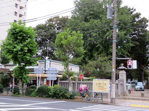 22日の川辺堀之内祭りと旧古河庭園・平塚亭と北とぴあと、日本のサーモン_e0133780_01252327.jpg