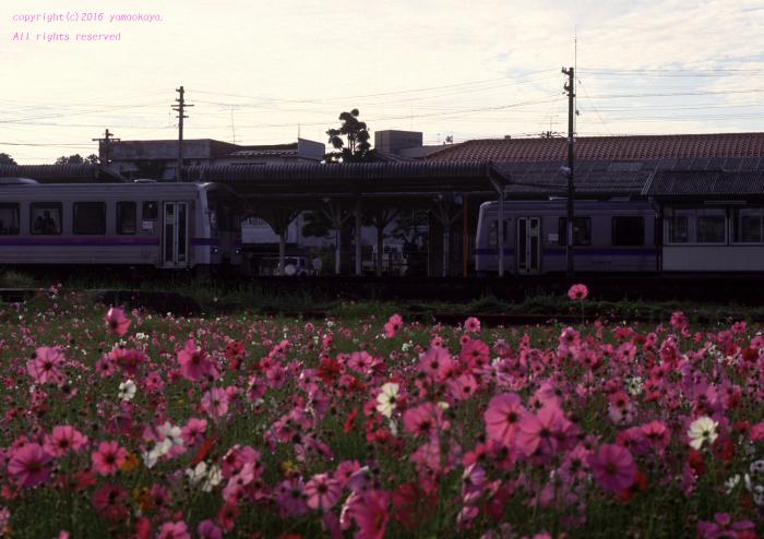d0309612_20103007.jpg