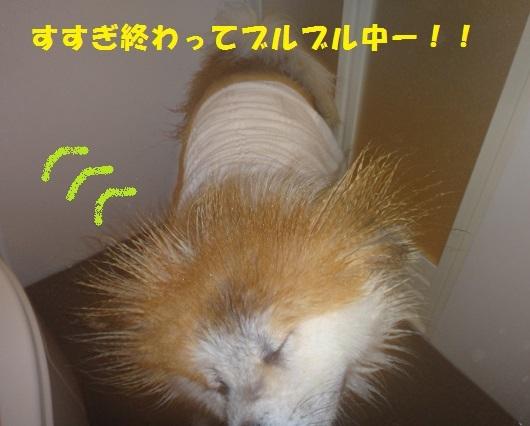 f0121712_15505649.jpg
