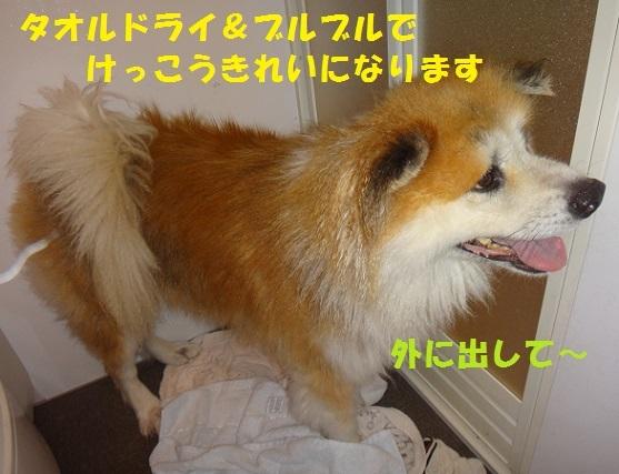 f0121712_15510093.jpg