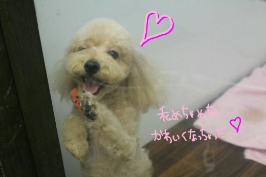 可愛い!_b0130018_00144646.jpg
