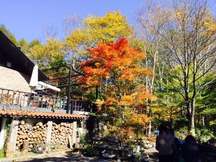 八ヶ岳の旅_f0101226_20351339.jpg