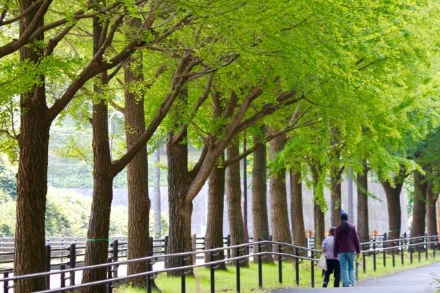 【保土ケ谷公園】_f0348831_21135463.jpg