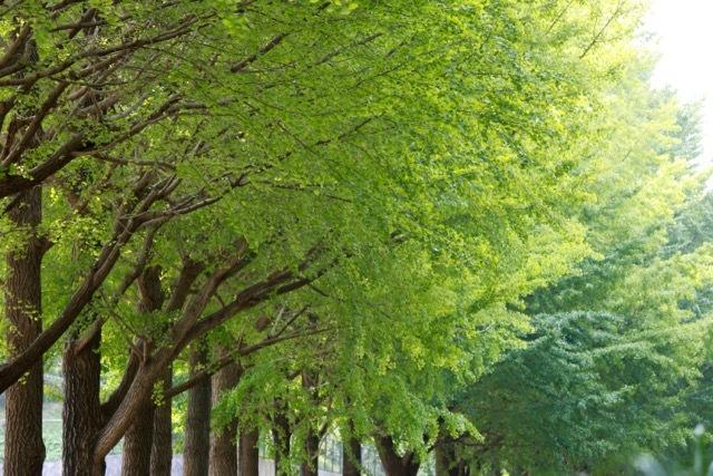 【保土ケ谷公園】_f0348831_21135740.jpg