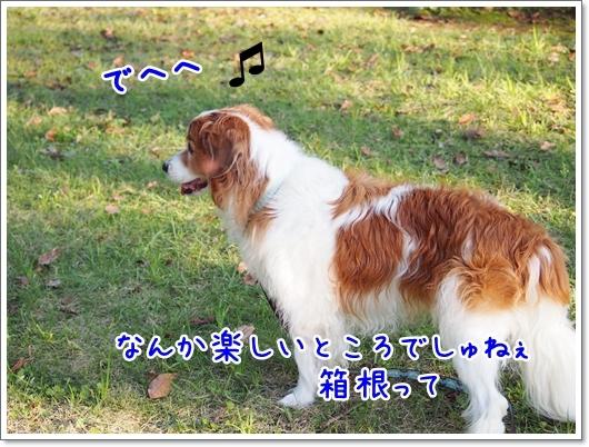 d0013149_00414173.jpg