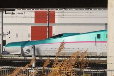 北海道新幹線はやぶさ、車両基地へ_b0106766_22553901.jpg