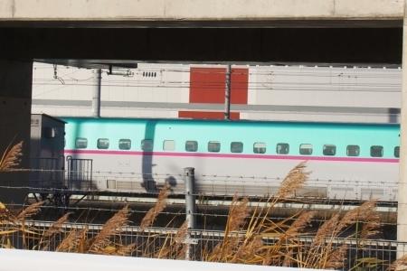 北海道新幹線はやぶさ、車両基地へ_b0106766_22554393.jpg
