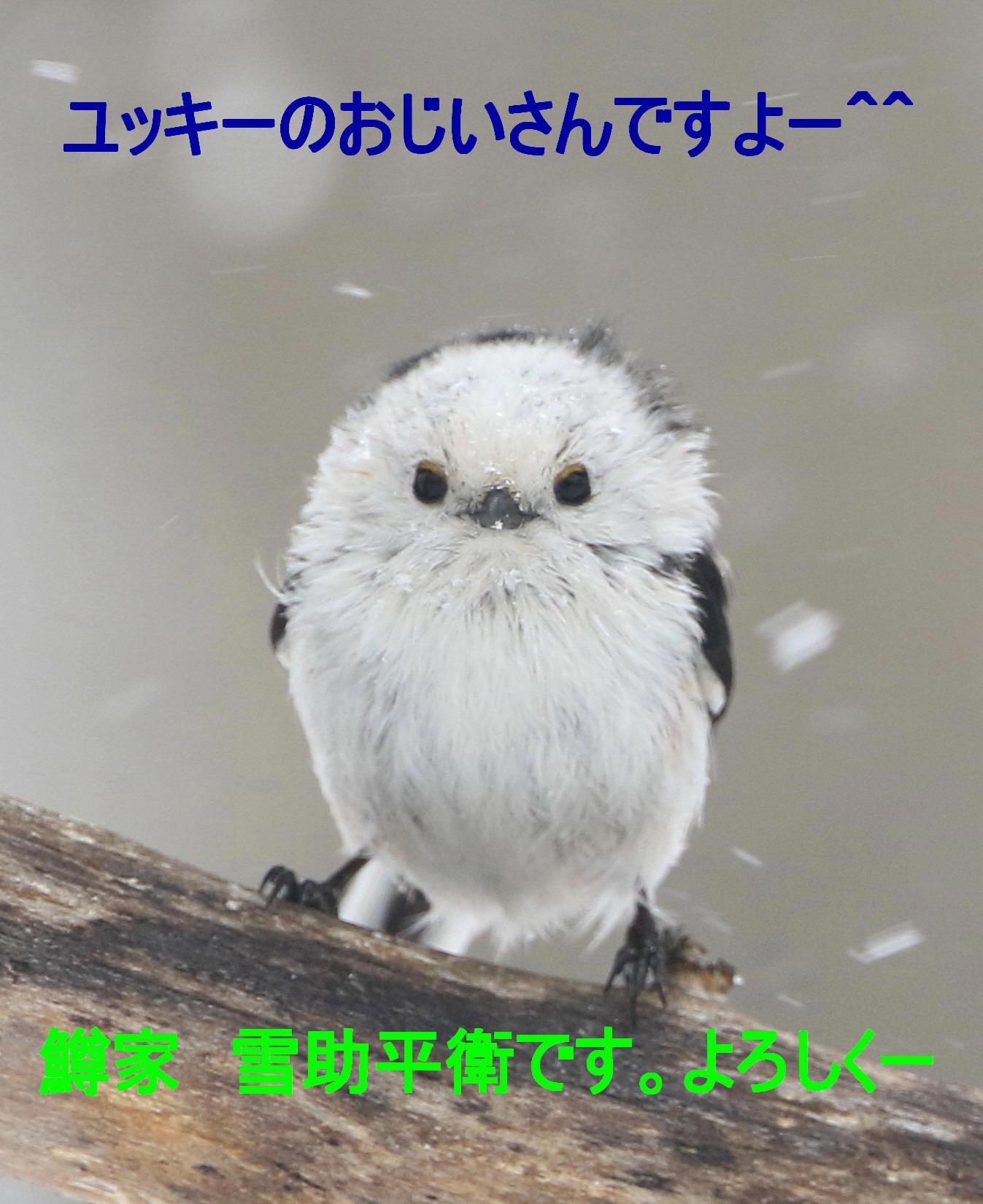 c0229170_18482298.jpg