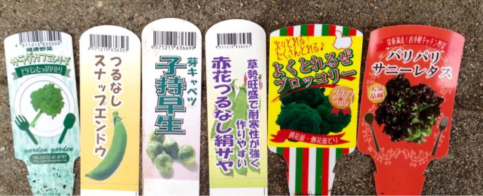 野菜の苗色々、西王母、石榴、まゆはけおもと…_b0087077_00431734.jpg