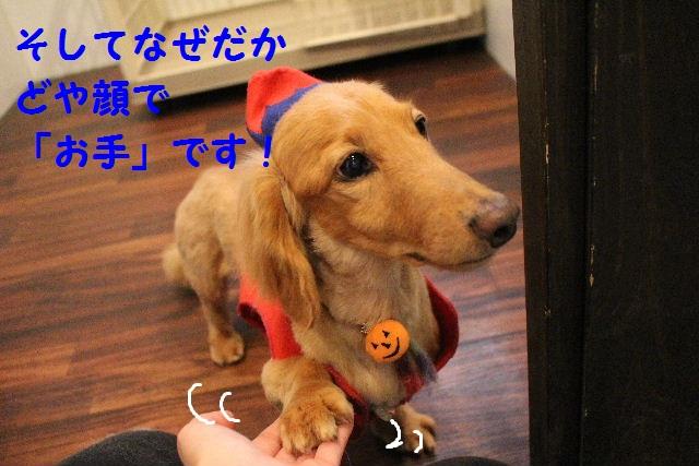 b0130018_742242.jpg
