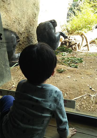 動物園を楽しめるように♪_a0275343_13205890.jpg