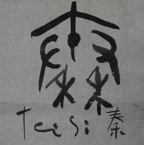 秦_c0169176_1145631.jpg