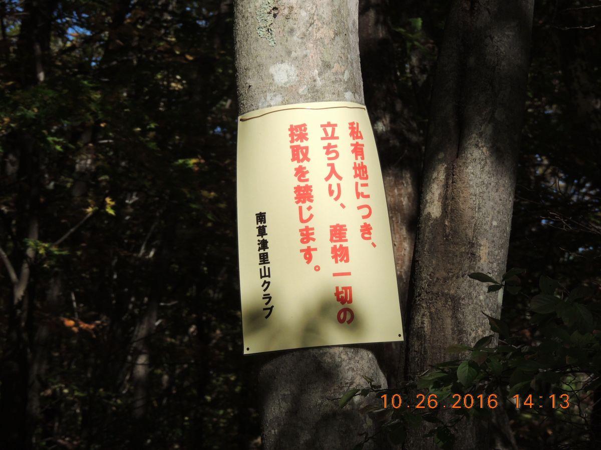 f0104277_20205236.jpg
