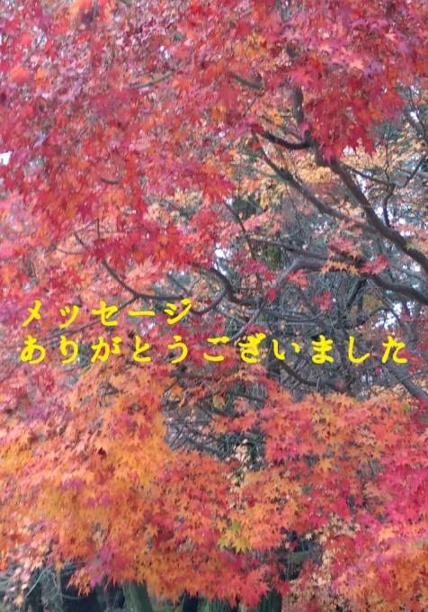 b0339997_17080716.jpg