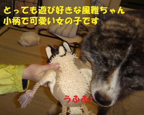f0121712_14481429.jpg