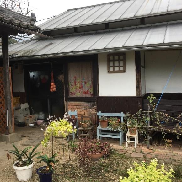 こっくんおかんの店_a0039748_00053189.jpg