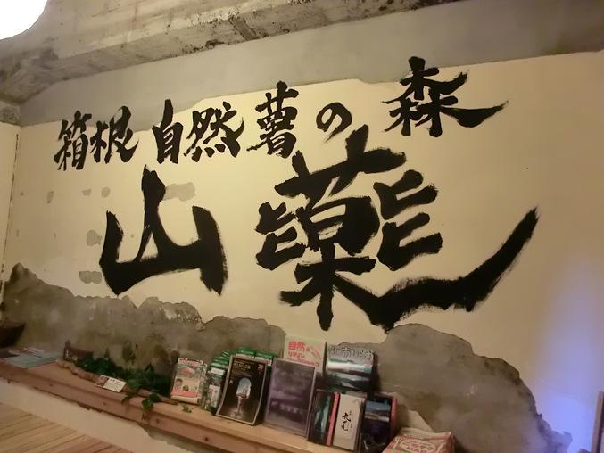 ふらり箱根旅 ~ 目指せ健康美人 @箱根宮ノ下 ~_d0212451_21185068.jpg