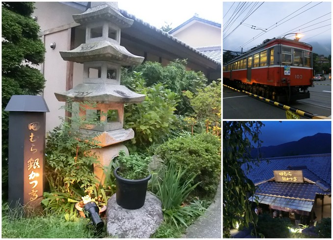 ふらり箱根旅 ~ 行列の豆腐かつ @箱根強羅 ~_d0212451_21245357.jpg
