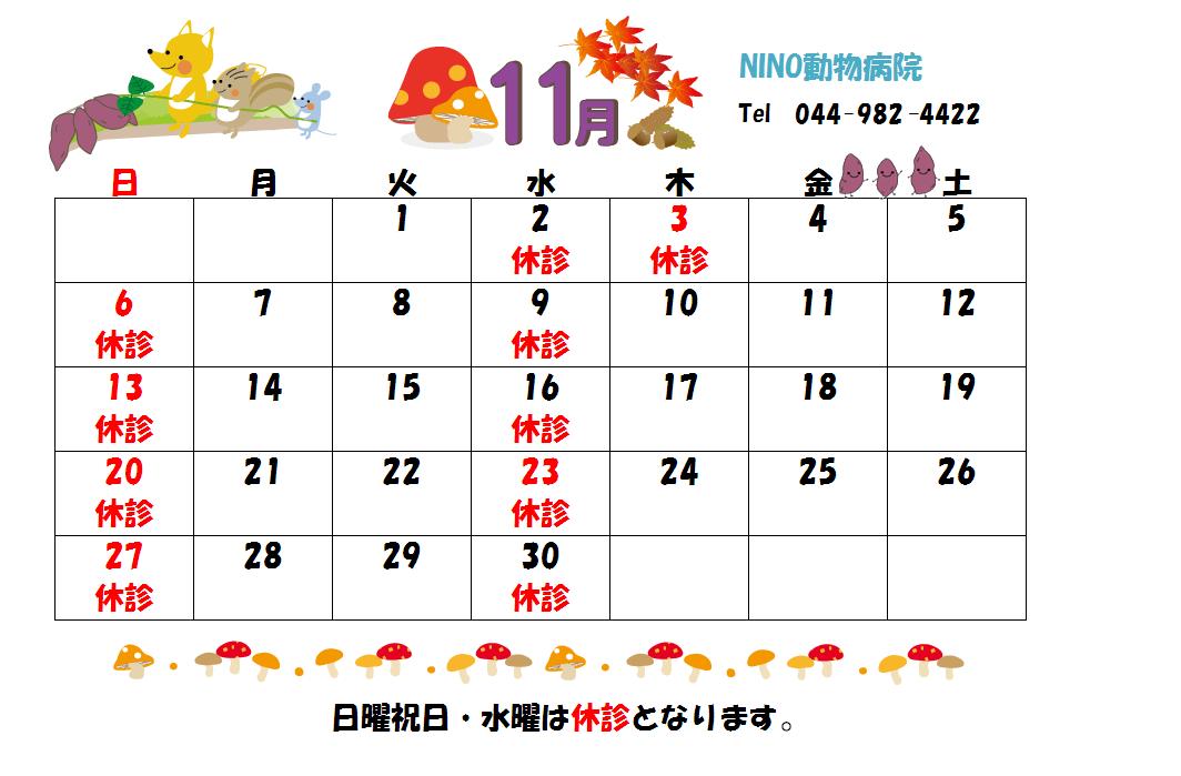 11月の診療日のお知らせ☆_e0288670_11122058.png
