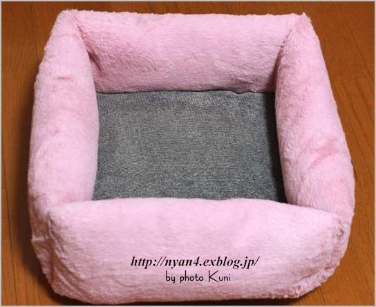 100均ショップの座布団で作る猫ベッド_f0166234_6154260.jpg