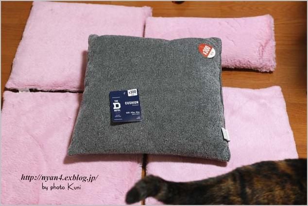 100均ショップの座布団で作る猫ベッド_f0166234_616262.jpg