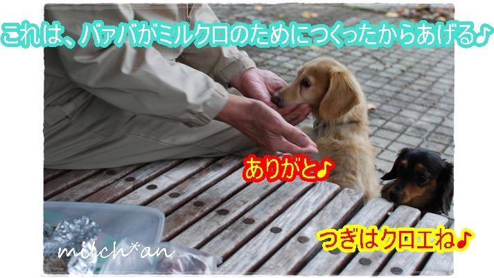 b0115642_19545484.jpg