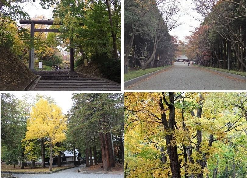 「円山公園の紅葉(黄葉)」 オーソッドクスに行ってきました。_f0362073_19140852.jpg