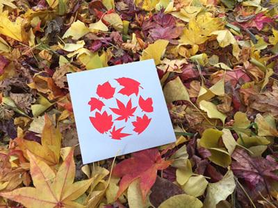 紅葉が終わったら冬の準備_d0171830_11124981.jpg