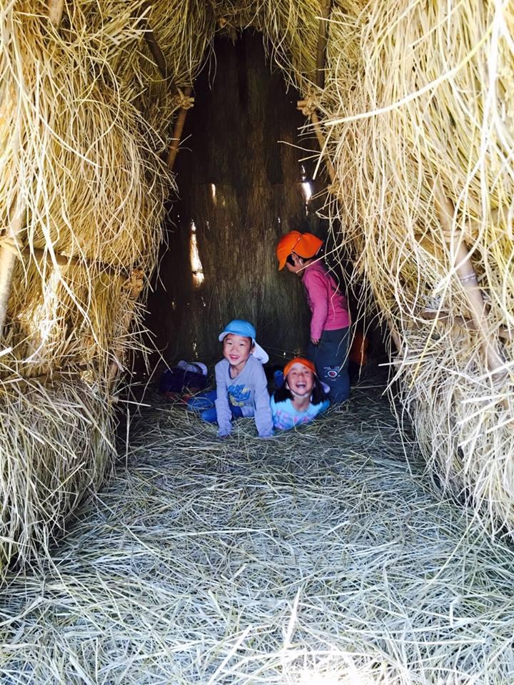 収穫祭_b0288732_18213994.jpg
