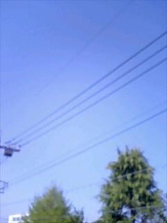 a0192147_1464836.jpg