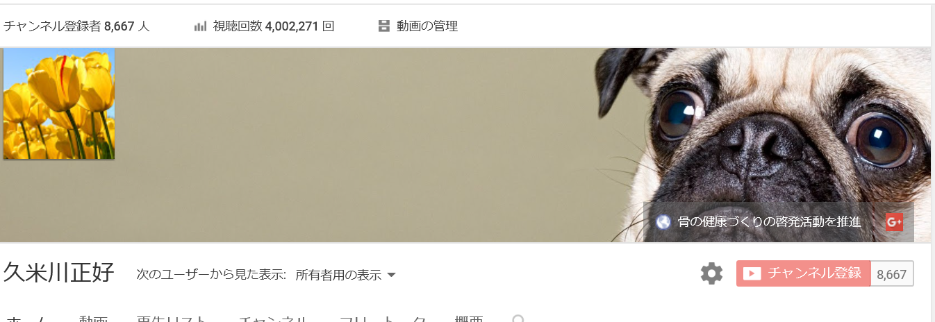 You Tubeの再生回数が400万回を超えました。_b0115553_16481065.png