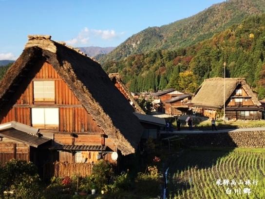 飛騨高山旅行 ~白川郷~_d0353281_23293490.jpg