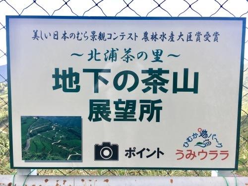 絶景 茶畑_b0201492_17031444.jpg