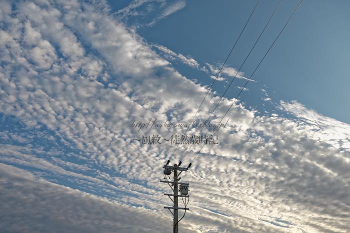 斑状高積雲。_f0235723_1955113.jpg