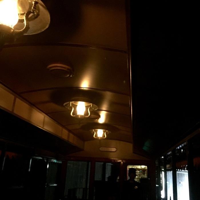 Tokyoディズニーランド  仮装 〔イウォーク編〕_d0105967_10435610.jpeg
