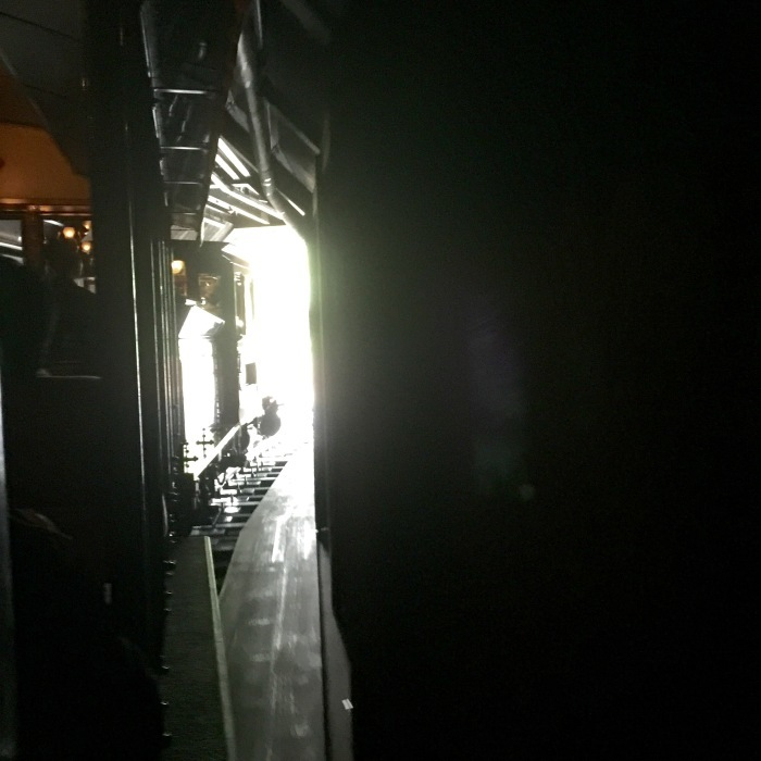 Tokyoディズニーランド  仮装 〔イウォーク編〕_d0105967_10442431.jpeg