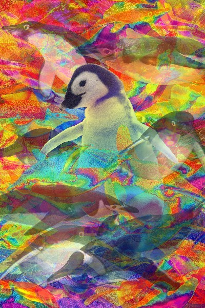 ペンギン先生の「フォトCGアート」_d0123492_23023059.jpg