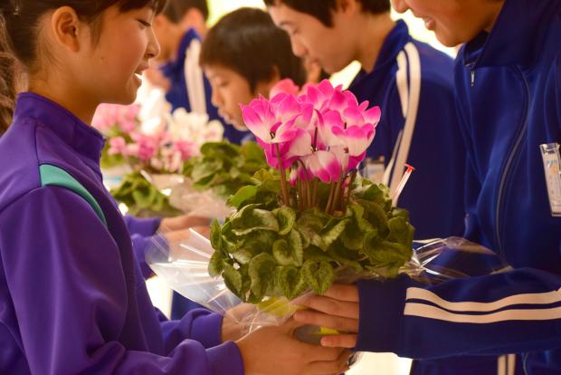 まごころと心づかいの花なのだ♪_c0259934_14471970.jpg